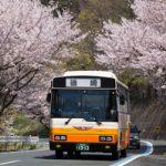 伊予鉄南予バス磯崎線2018