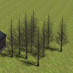 影の出る木を作る